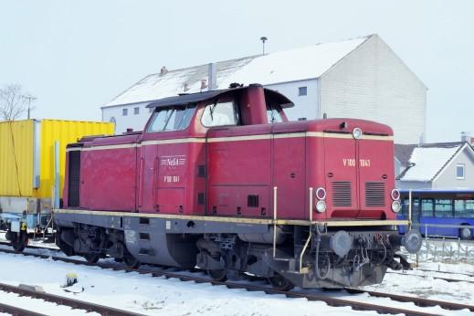 IMGP4504
