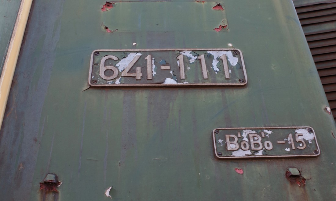 IMGP2496